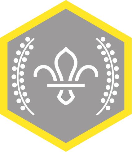 Cub Chief Scouts Silver Award Badge